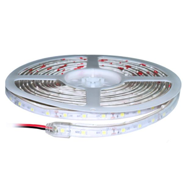 BANDA LED SMD3528 6000K IP65 5M